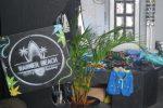 africa-surfboard-shop